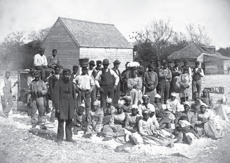 African Americans plantation