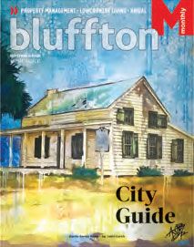 blufftoncover