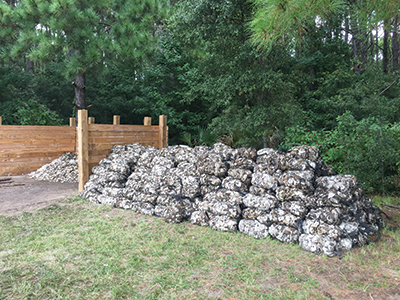 Oyster Shell Recycling5