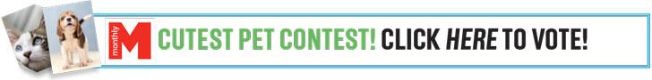 Pet Contest