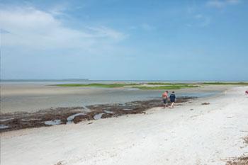 The beautiful beaches of hilton head for Hilton head surf fishing