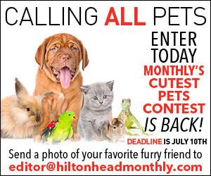 Pet Contest Cube