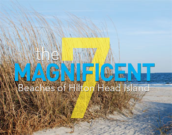 The 7 Magnificent Beaches of Hilton Head Island