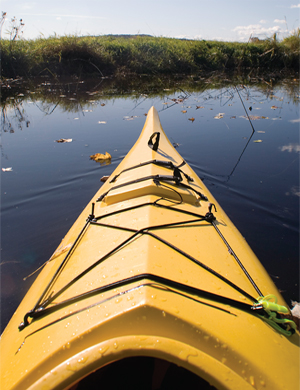 Kayaking in the Lowcountry